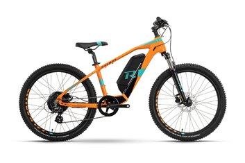 24 Zoll - E-Bike-Pedelec - Raymon FourRay E 1.0 - 300 Wh - 2021 - 24 Zoll - Diamant