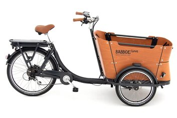 Babboe Slim Mountain - Babboe Curve-E Disc - 450 Wh - 2021 - 26 Zoll - Sonstiges