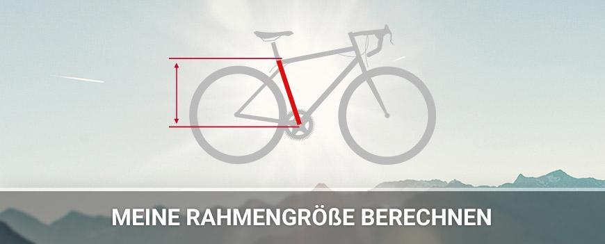 Welches Fahrrad Passt Am Besten Zu Mir Fahrrad Xxl
